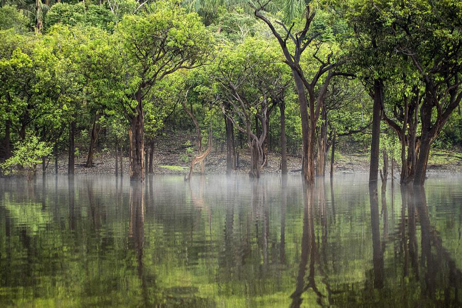 Tupana river by Álvaro Minguito on 500px.com