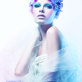 Purple and Blue by Amanda Diaz (AmandaDiaz)) on 500px.com