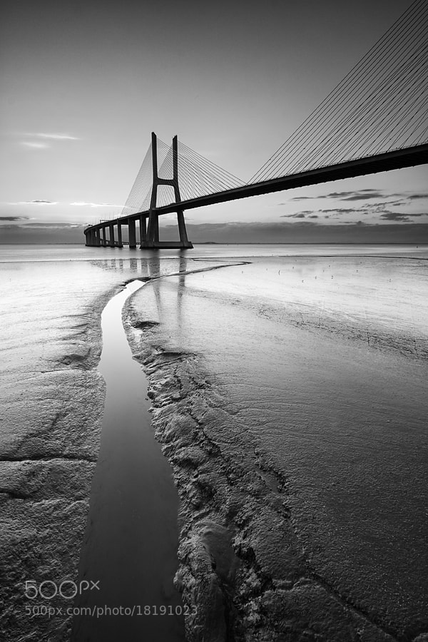 Photograph silver mud by Paulo Rocha on 500px