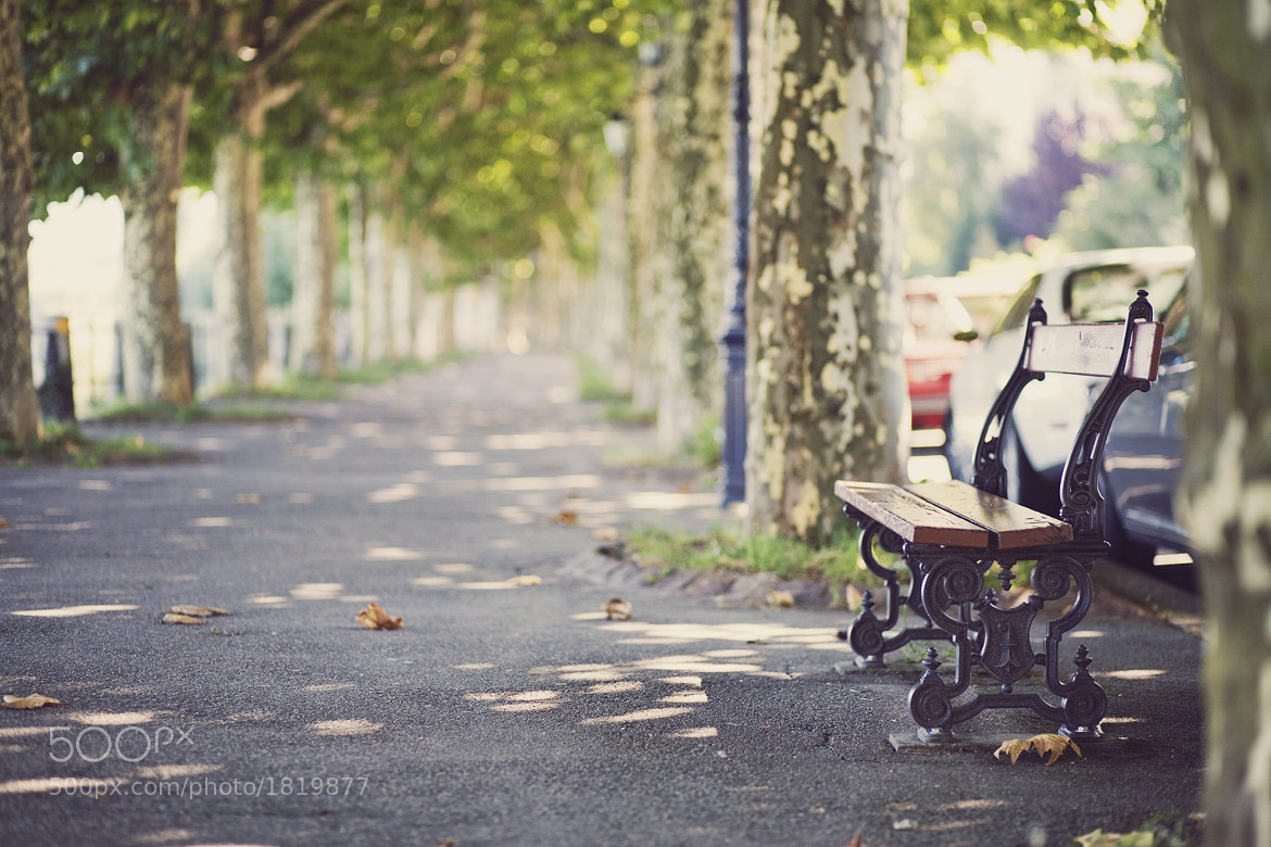 Photograph Take a seat & enjoy the bokeh! by Konstantin Escher on 500px