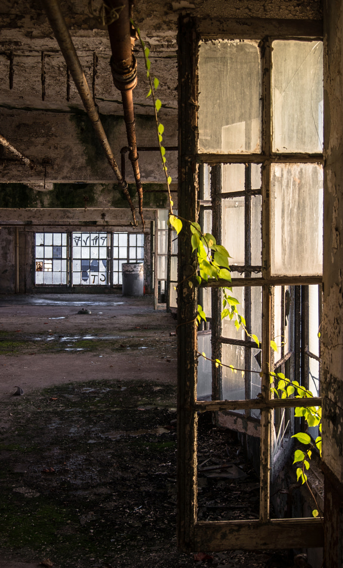 Photograph Former Factory by Kurt Tavares on 500px