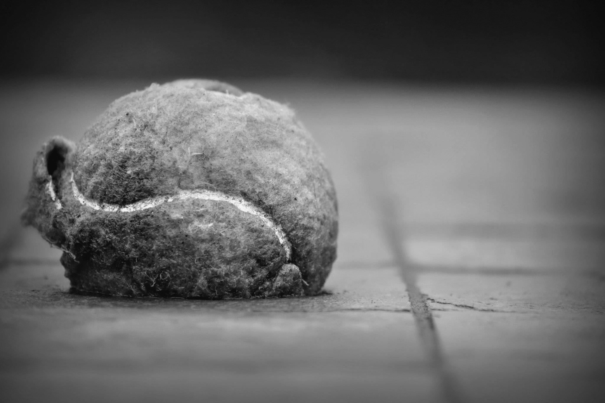 Photograph Tennis Ball Elements of Age & Character  by Cody Griffin on 500px