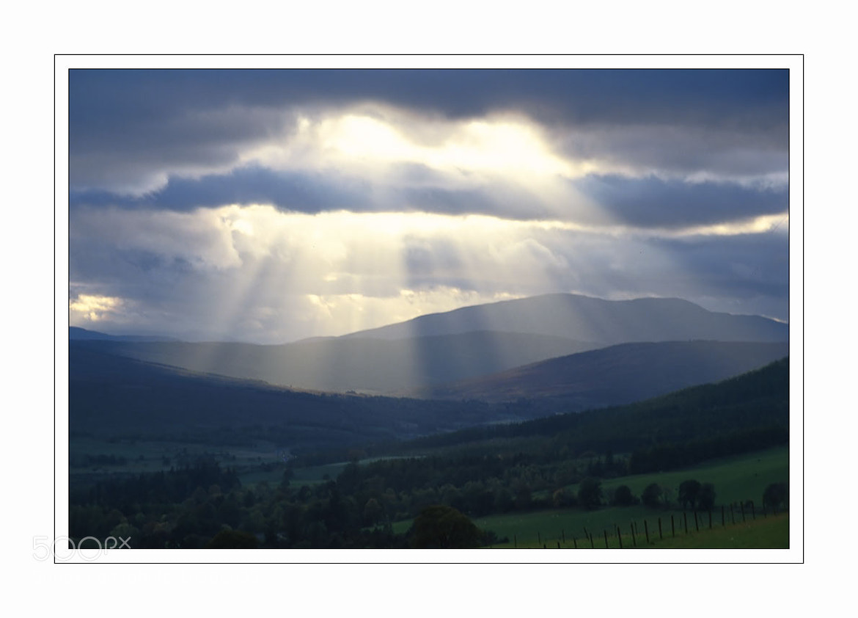 Photograph Last Rays by Derek Daniel on 500px