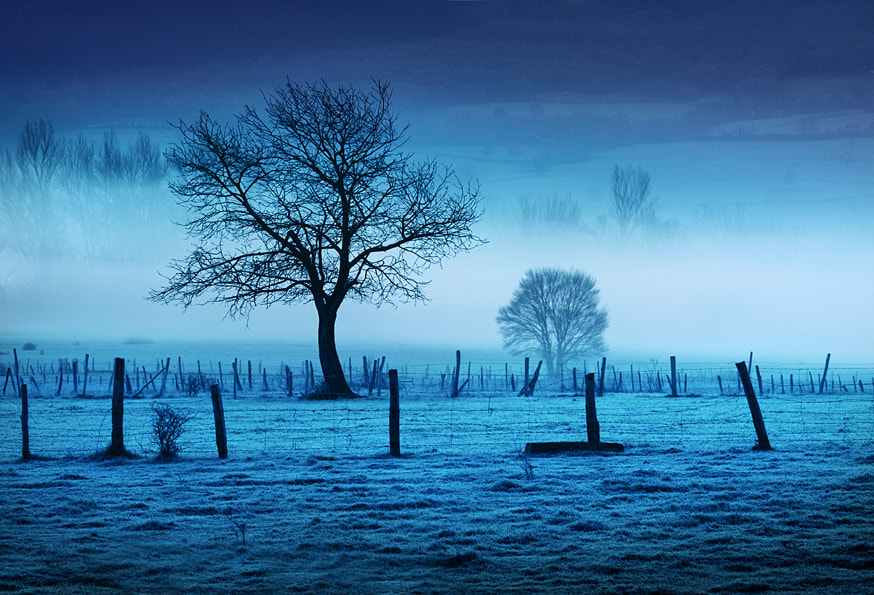 Photograph Cold Blue by Alex  McQueen  on 500px