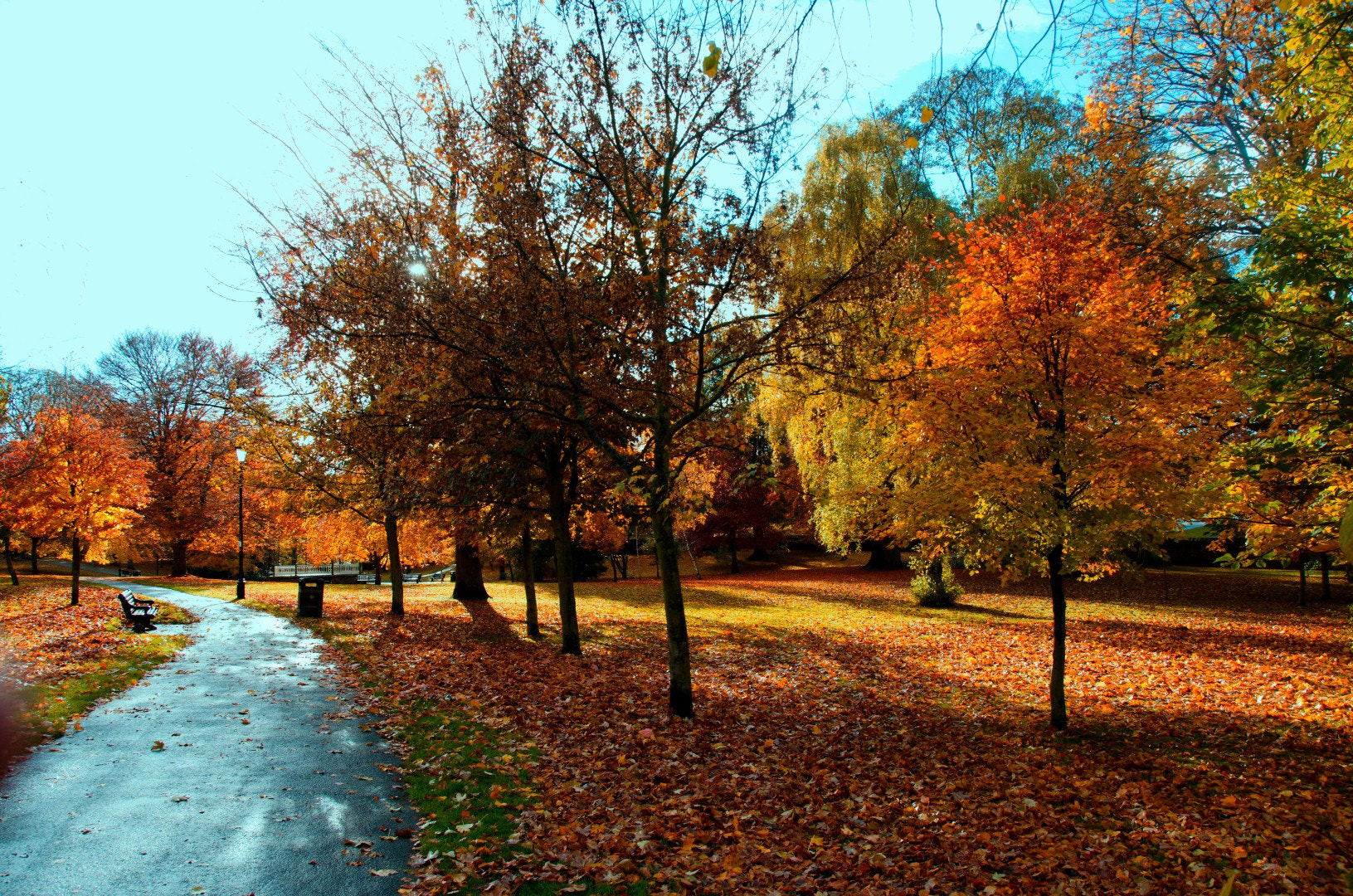 Photograph A Walk In The Park by Phil Robson on 500px