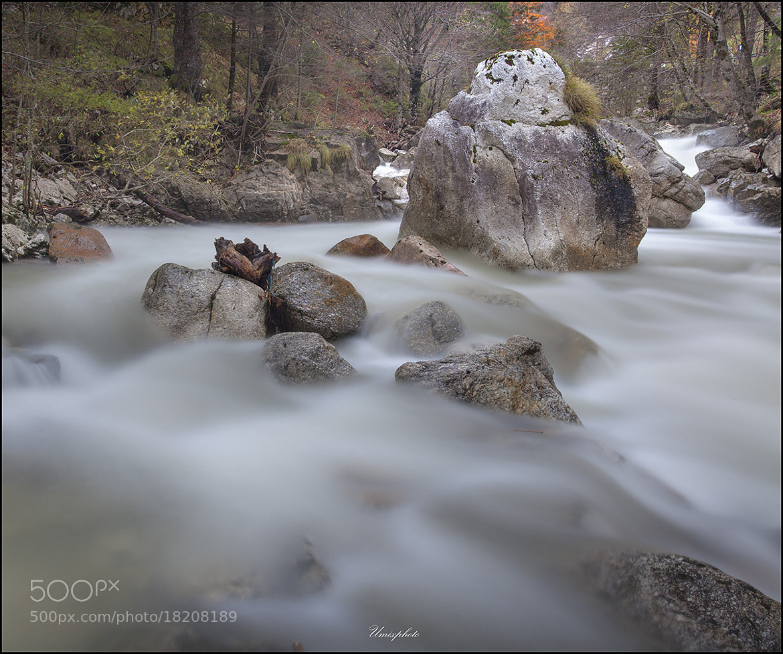 Photograph Down By The River by Jaro Miščevič on 500px