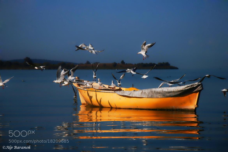 Photograph Uluabat Lake  by Alp Baranok on 500px