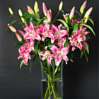 bouquet of fresh lily flowers on black background