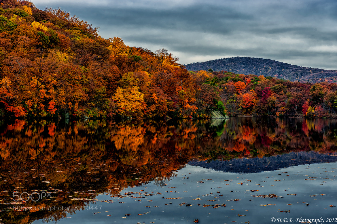 Photograph Overcast Reflections by Harold Begun on 500px