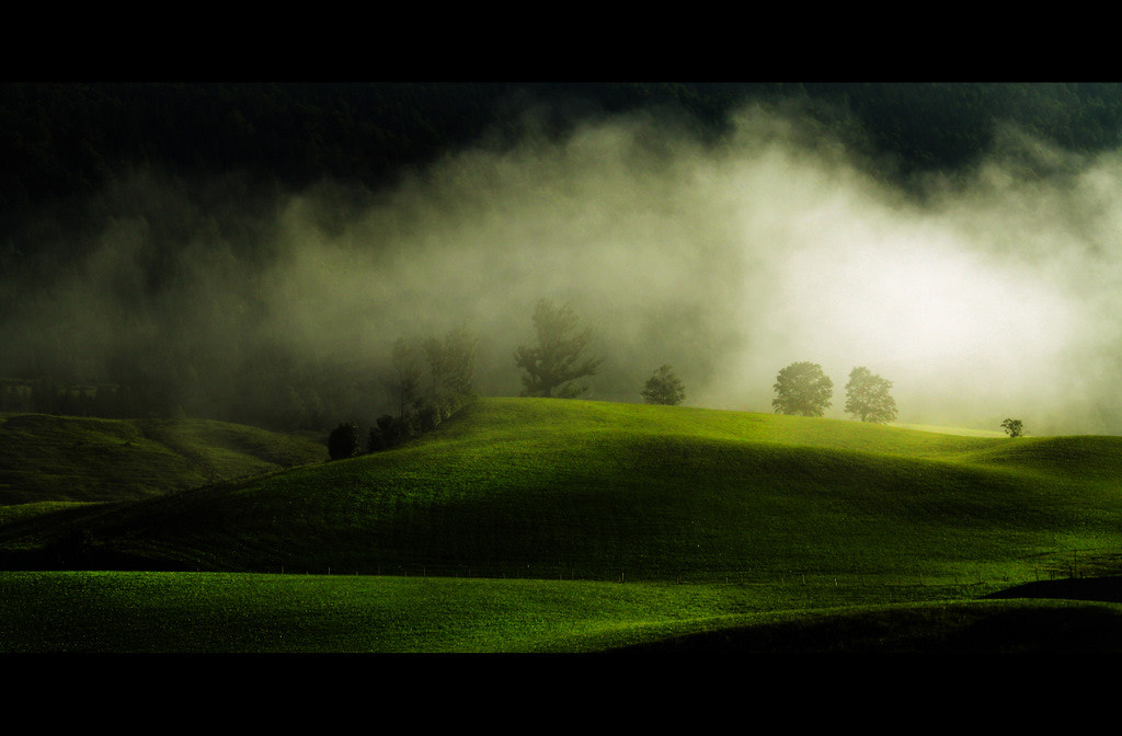Photograph Green Hills by David Butali on 500px