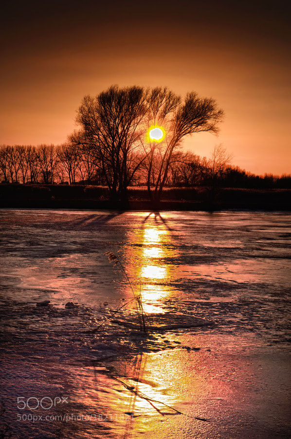 nature, sunset, winter, lake