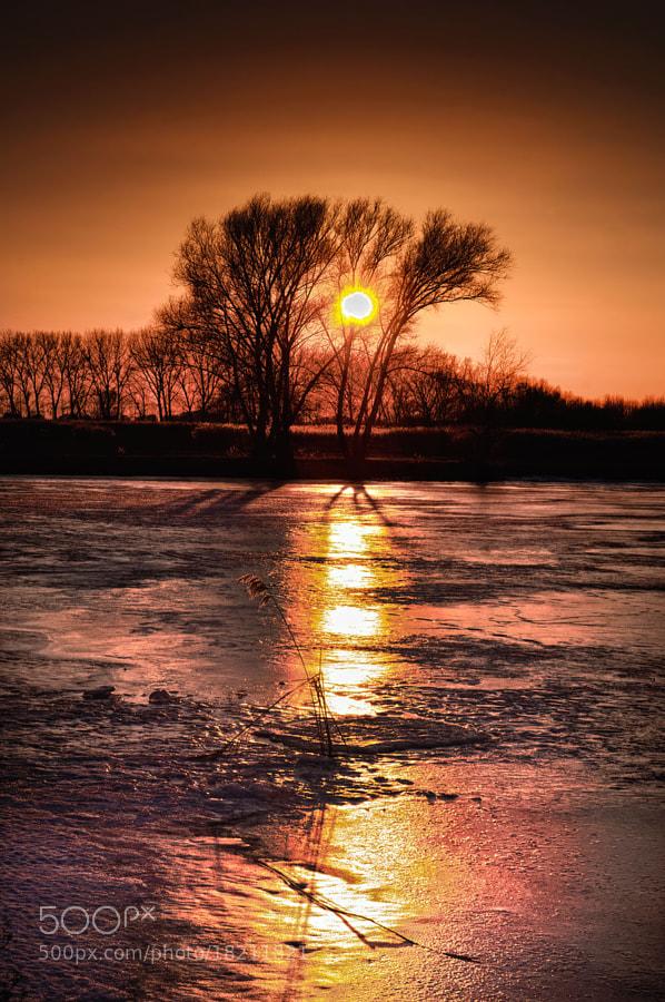 nature, sunset, winter, lake