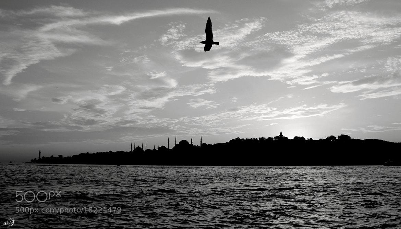 Photograph istanbul under it's wings.. by Ahmet ŞİMŞEK on 500px