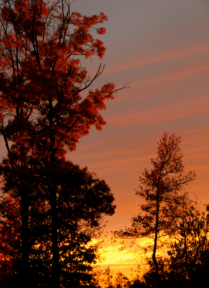 Photograph Evening sets by Ann Weis on 500px