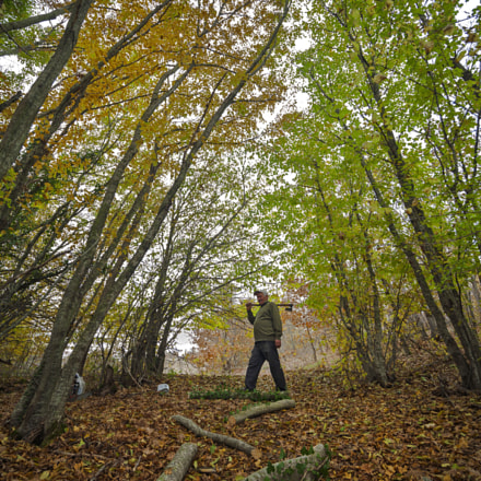 Forest and human, Canon EOS 5D, Sigma 15-30mm f/3.5-4.5 EX DG Aspherical