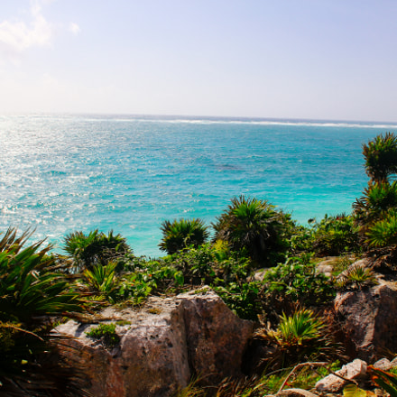 Mexico at its finest., Canon EOS 60D, Sigma 18-50mm f/2.8-4.5 DC OS HSM