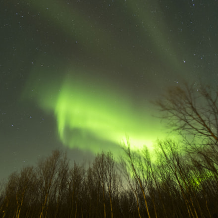 Northern Lights - again, Canon EOS 6D, Canon EF 15mm f/2.8 Fisheye