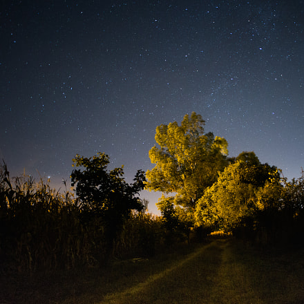 Starry Night, Canon EOS 5D MARK III, Canon EF 28mm f/2.8