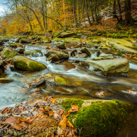 Fall in the Catskills., Canon EOS 5D MARK III, Tamron AF 19-35mm f/3.5-4.5