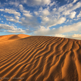 Sandy Sunrise by Gary Weathers (GaryJWeathers)) on 500px.com