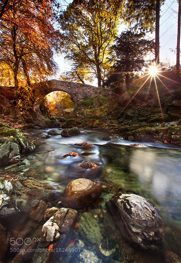 Photograph Foley's bridge  by Stephen Emerson on 500px
