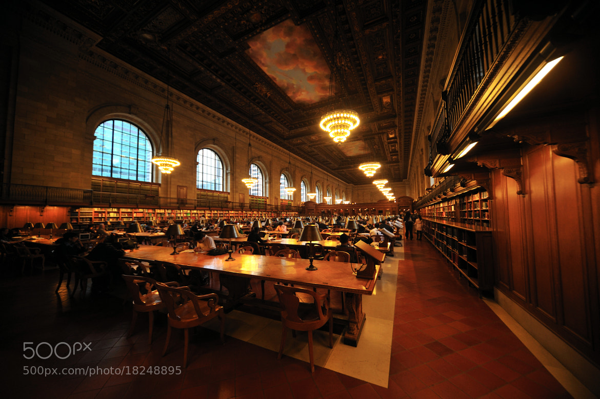 Photograph The New York Public Library by Michael FRANCHITTI on 500px