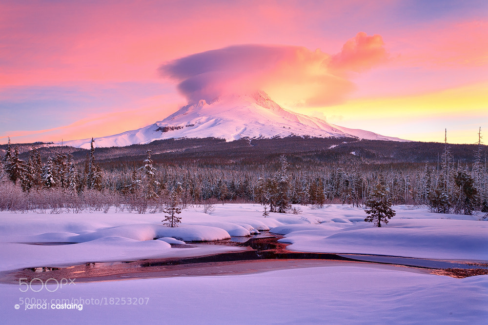 Photograph Mount Hood Meadow by Jarrod Castaing on 500px