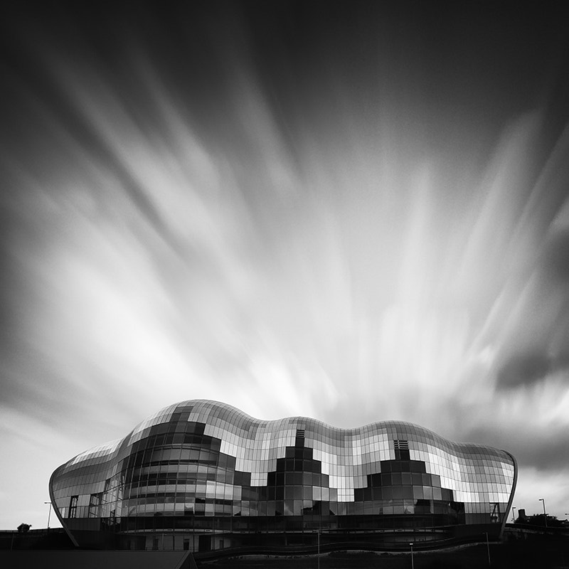 Photograph The Sage by Jeff Vyse on 500px