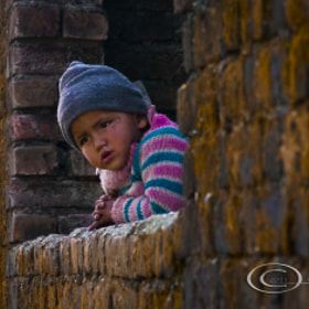 North India by Carrie Stiles (CarrieStiles)) on 500px.com