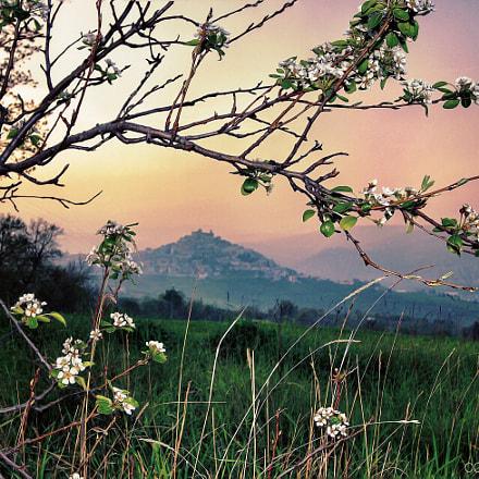 Sullo sfondo Casoli (CH) - Italy
