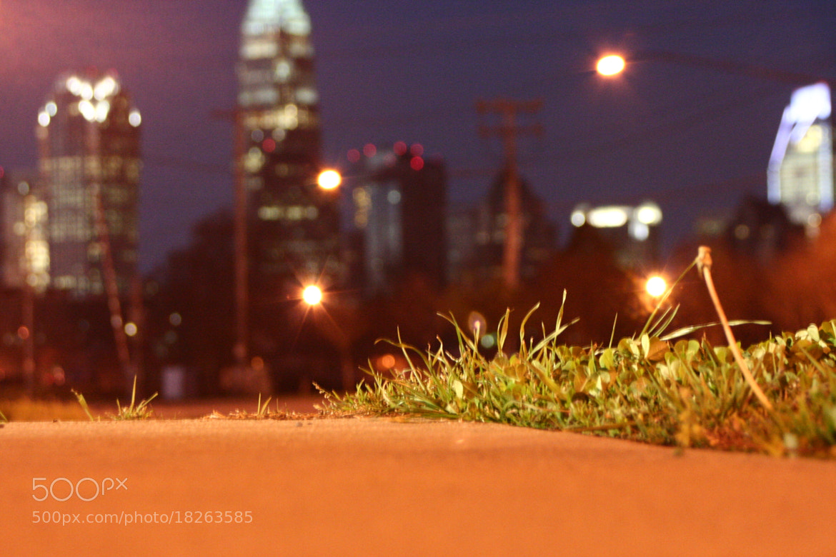 Photograph Charlotte Sidewalk by Caleb McKnight on 500px