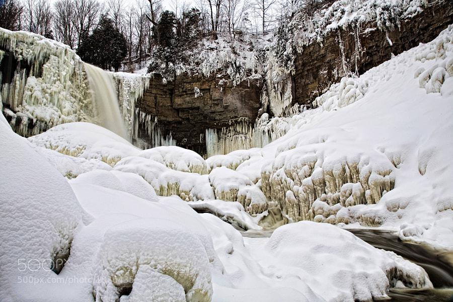 Taken January 2009.