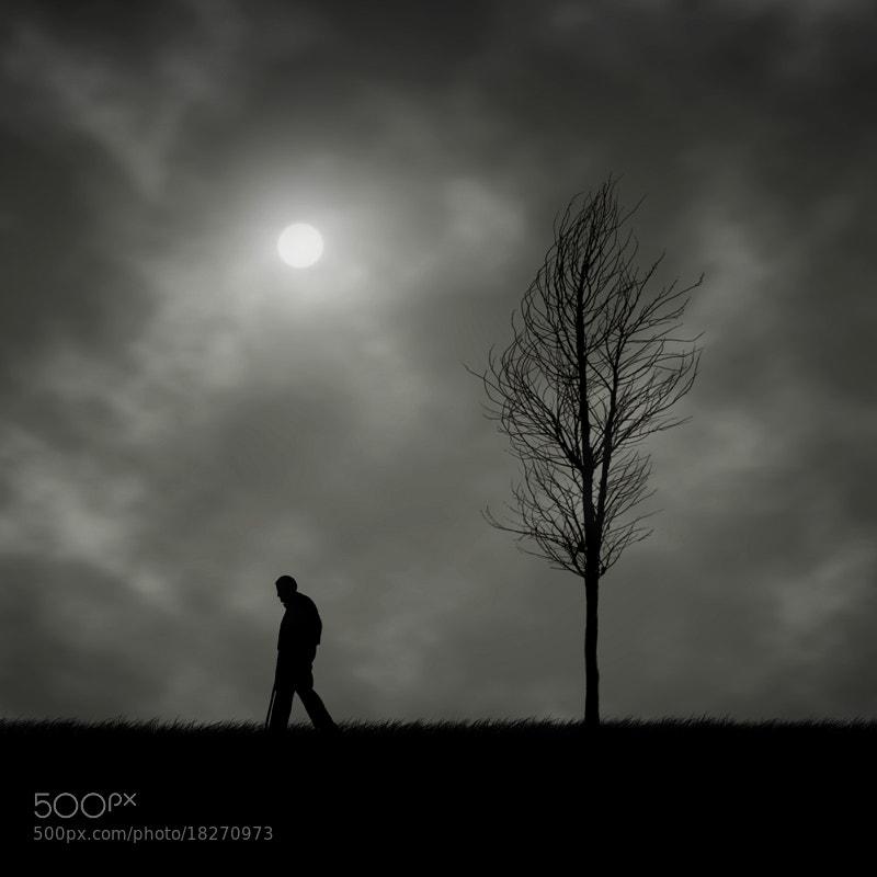 Photograph Dark Way by Hossein Zare on 500px