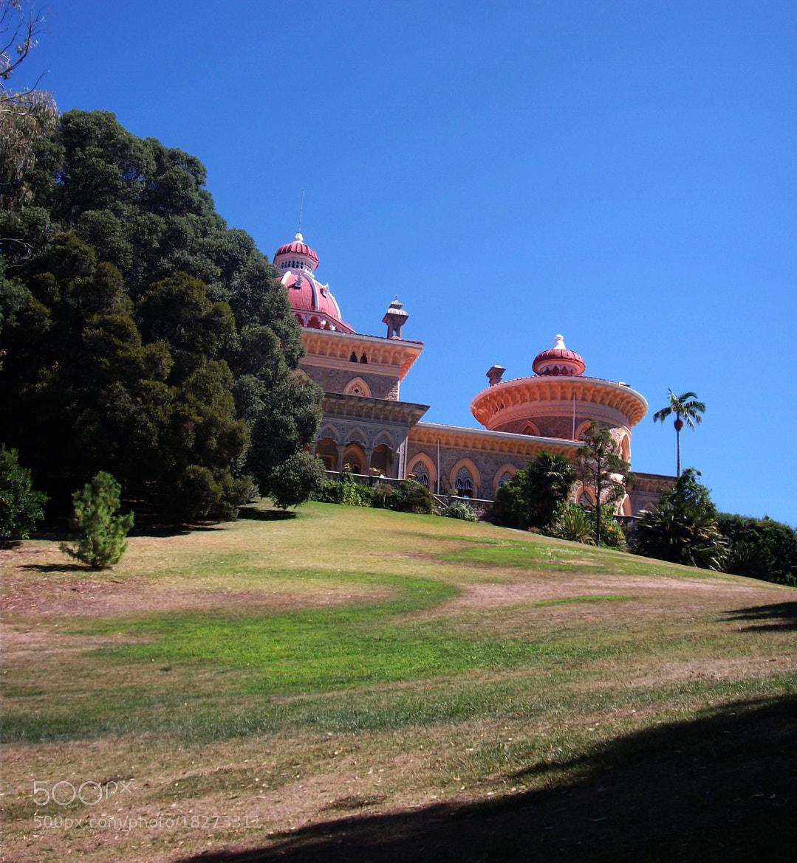 Photograph Palácio de Monserrate by Florindo Silva on 500px