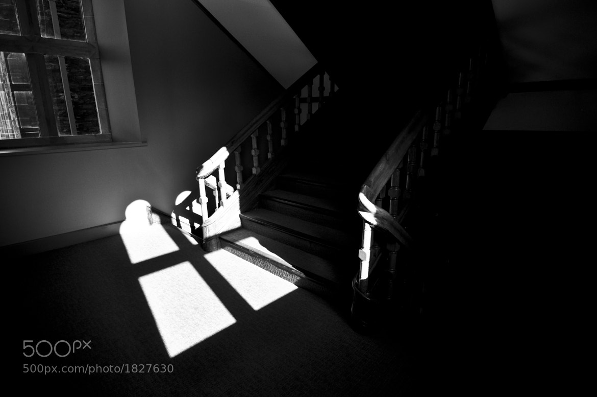 Photograph Shadows 'n Highlights by Lucian Bickerton on 500px
