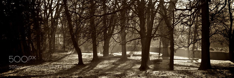 Photograph Fog by Stojak Nikola on 500px