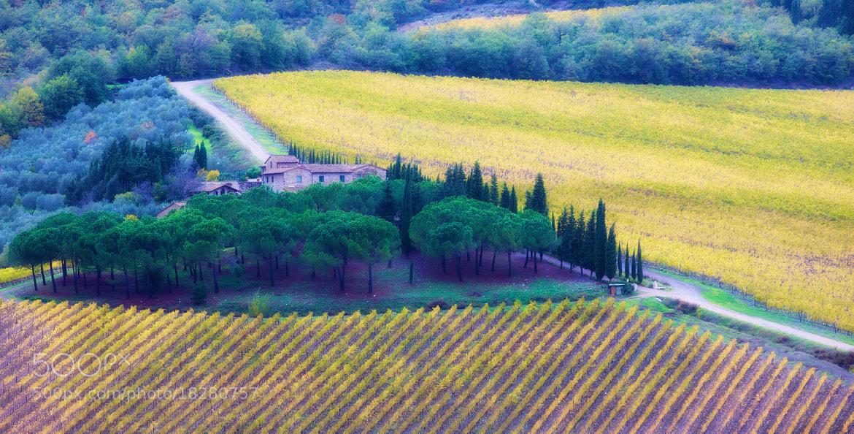 Photograph zona chianti  by Eric Dimarcantonio on 500px