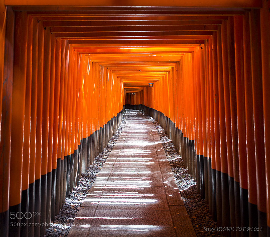 Photograph Fushimi Inari - Never ending way by Jerry Huynh tot on 500px