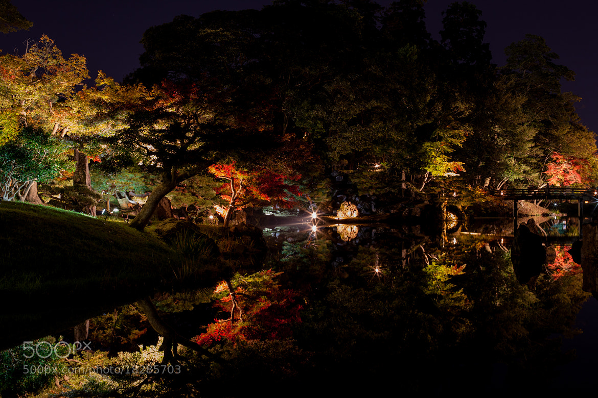 Photograph The light of the autumn by manabu yasuda on 500px