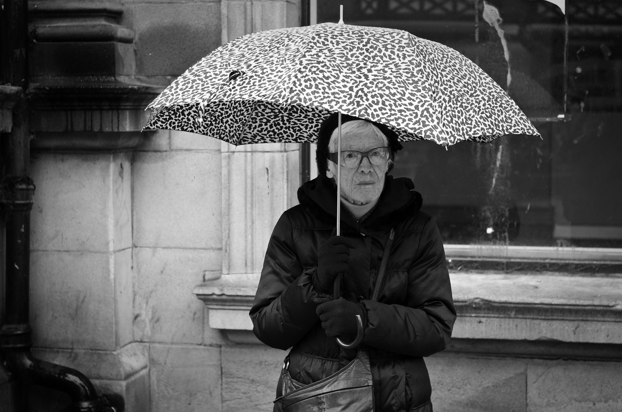 Photograph Umbrella... by alfie wright on 500px