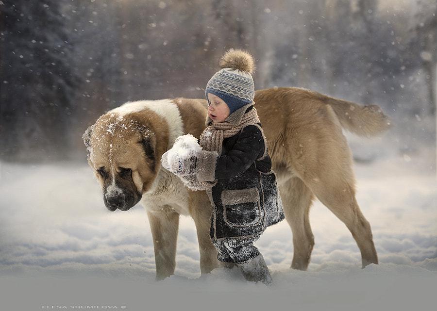 winter day by Elena Shumilova on 500px.com