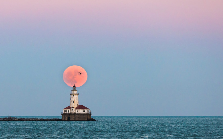 Chicago Supermoon by Ionut Lupu on 500px.com