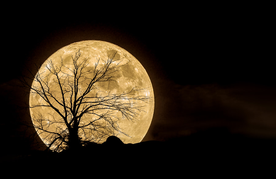 super moon by vedat esen on 500px.com