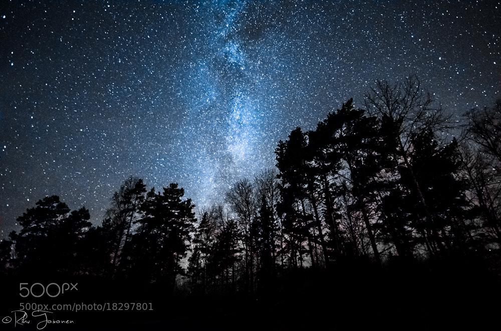 Photograph Milky Forest by Riku Toivonen on 500px