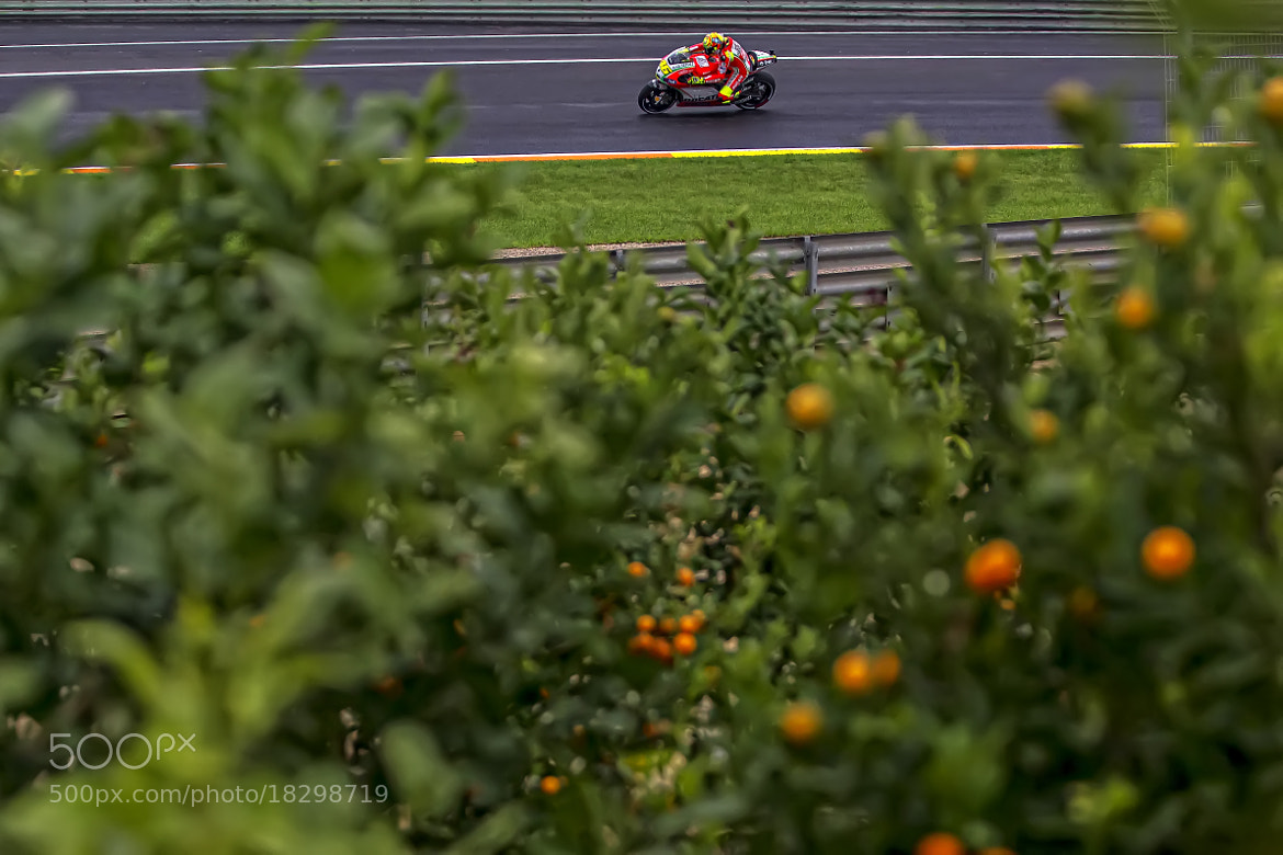 Photograph VR 46 at the Land of the Oranges by efecreata photography on 500px