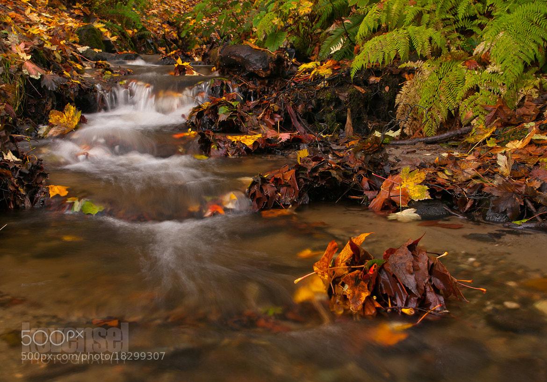 Photograph Autumn Calm by Ken Vensel on 500px
