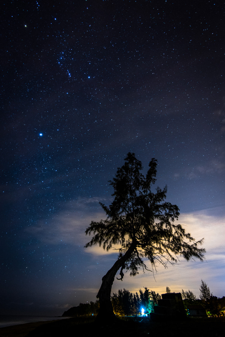Photograph under the stars by Mk Azmi on 500px