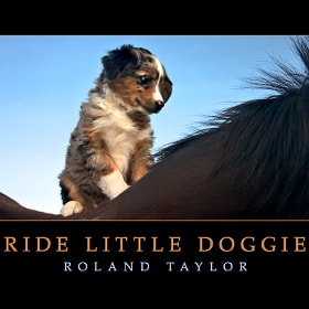 Ride Little Doggie