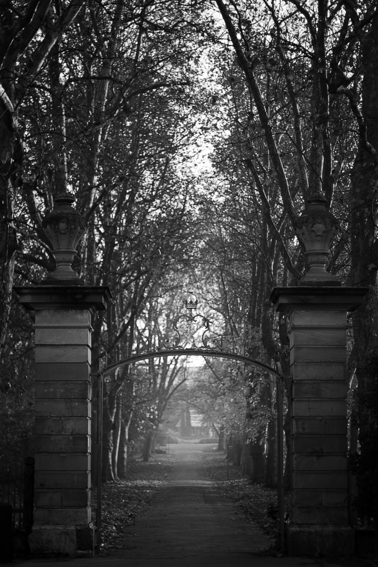 Photograph This way. by Frank Schillinger on 500px