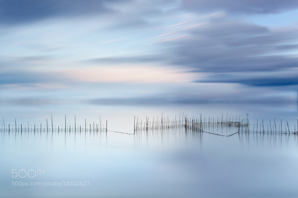 Photograph Fishnets III by Jose Beut on 500px